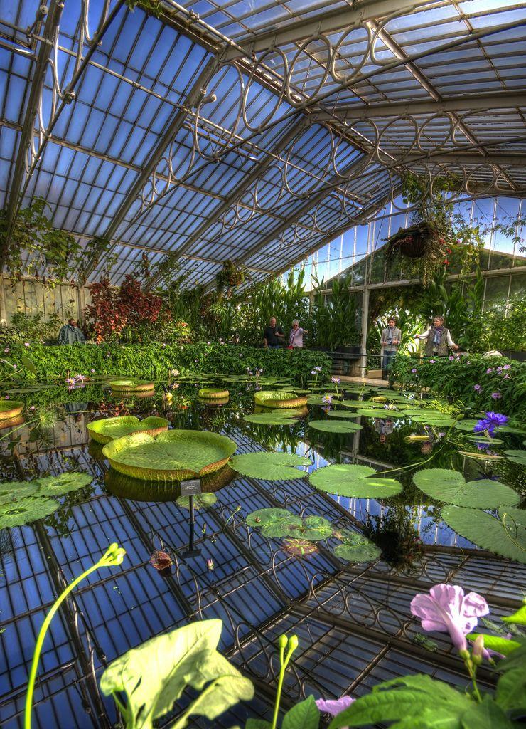 Waterlily House HDR Kew Gardens in 2020 Kew gardens