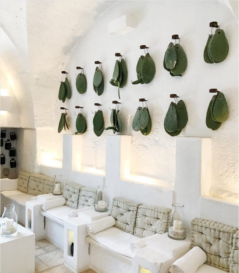 A Most Unusual Wall Decor Hanging Cactus Leaves Meria Cimino Hotel In Mexico