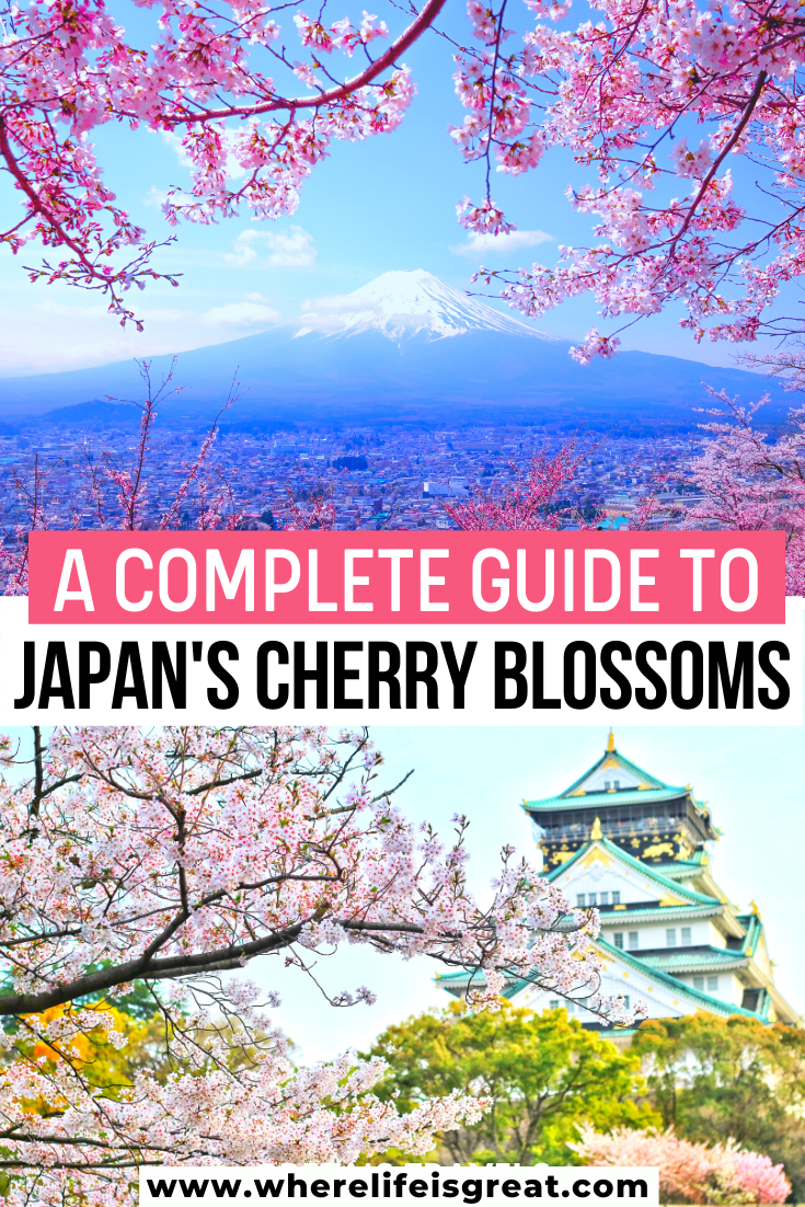 The Ultimate Guide To Cherry Blossom In Japan Asia Travel Japan Travel Guide Travel Destinations Asia