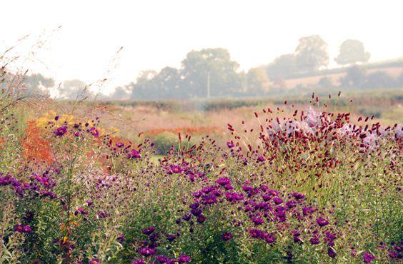 Hauser Wirth Garden Somerset Piet Oudolf Garden Design Landscape Design Prairie Planting