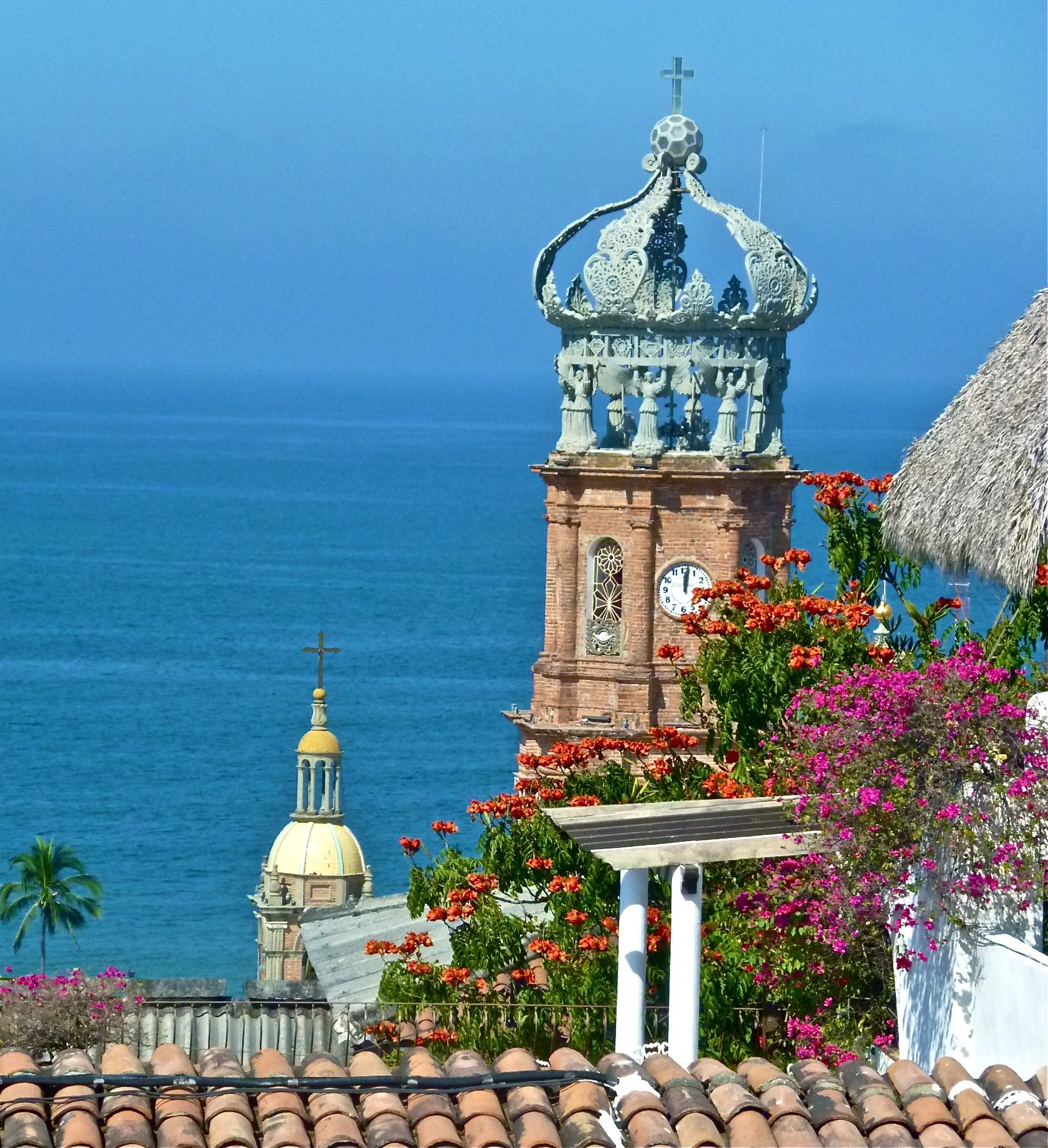 Things to see in mexico 16 cool things to do in puerto vallarta the