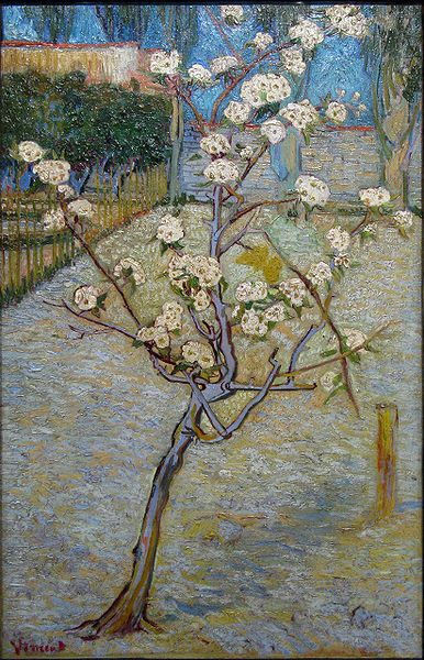 Vincent VAN GOGH (Dutch Post-impressionist painter, 1853-1890): Blossoming Pear Tree, 1888