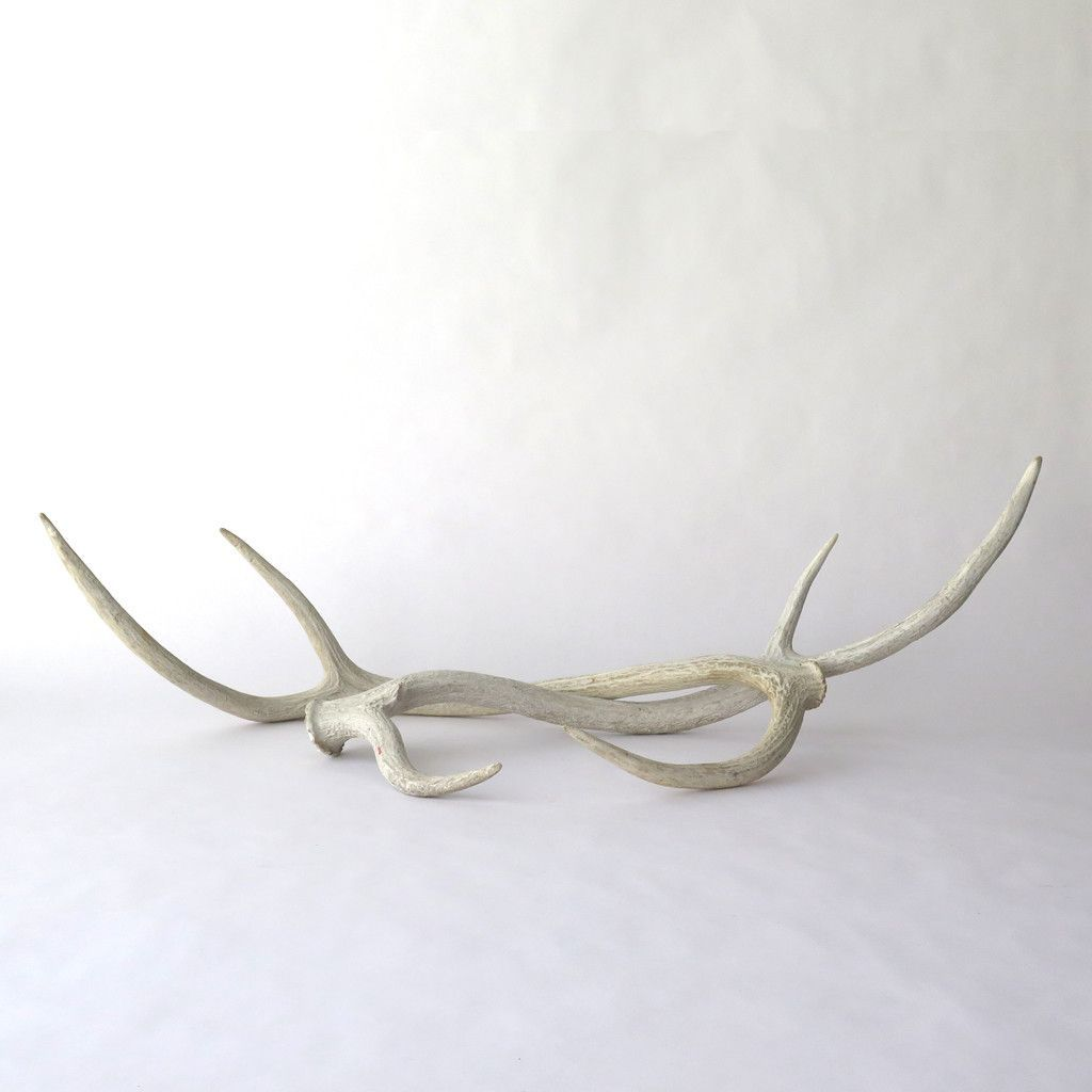 Weathered Axis Antlers a Pair