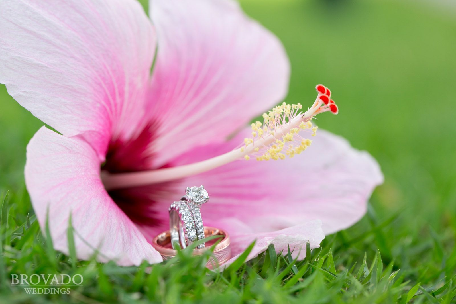 Hawaii wedding ring & hibiscus my favorite flower. I would die for ...