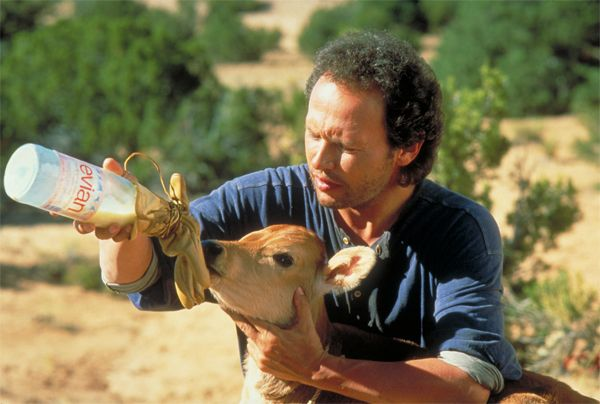 City Slickers with Billy Crystal - one of the few movies that can make me laugh out loud!