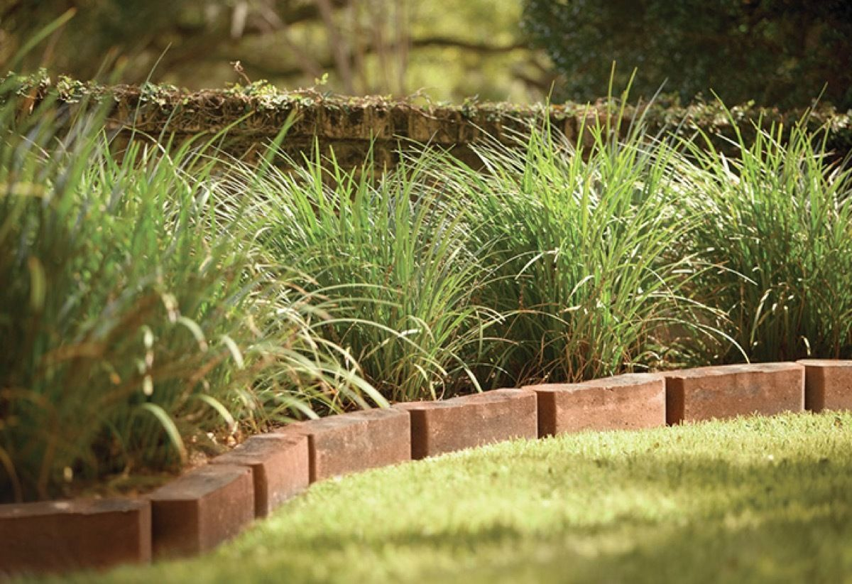 59 Diy Landscaping Ideas And Tips To Improve Your Outdoor Space Brick Garden Edging Brick Landscape Edging Diy Landscaping
