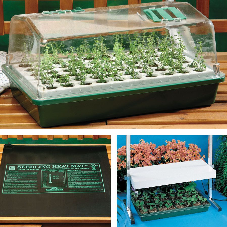 Biodome Plus Light And Heat Kit Contains A Biodome With 60 Cell Tray Seedling Fertilizer A Heat Mat And A Tabletop Plan Seed Starter Seed Starter Kit Seeds
