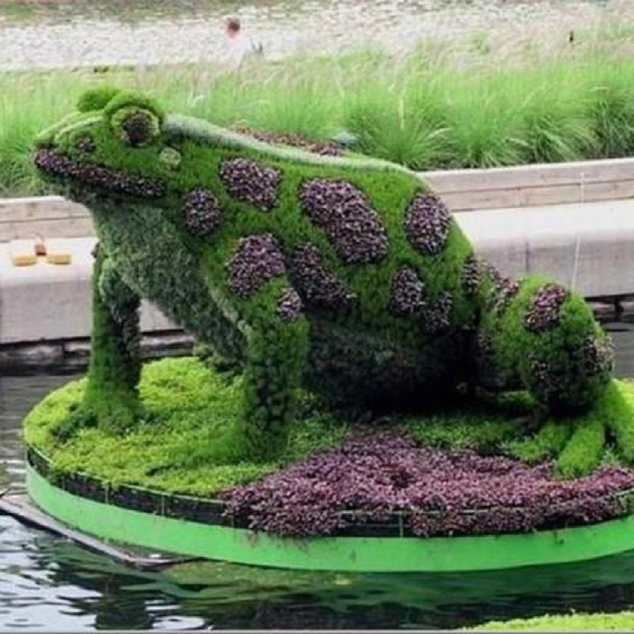 """Amazing Topiary: Just Love This Frog...He Looks Like """"Rupert"""" Which Is The"""