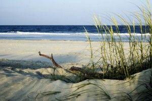 Beach Tybee Island Savannah Anything Beachy Pinterest