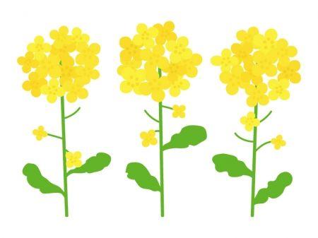 「春 イラスト」の画像検索結果