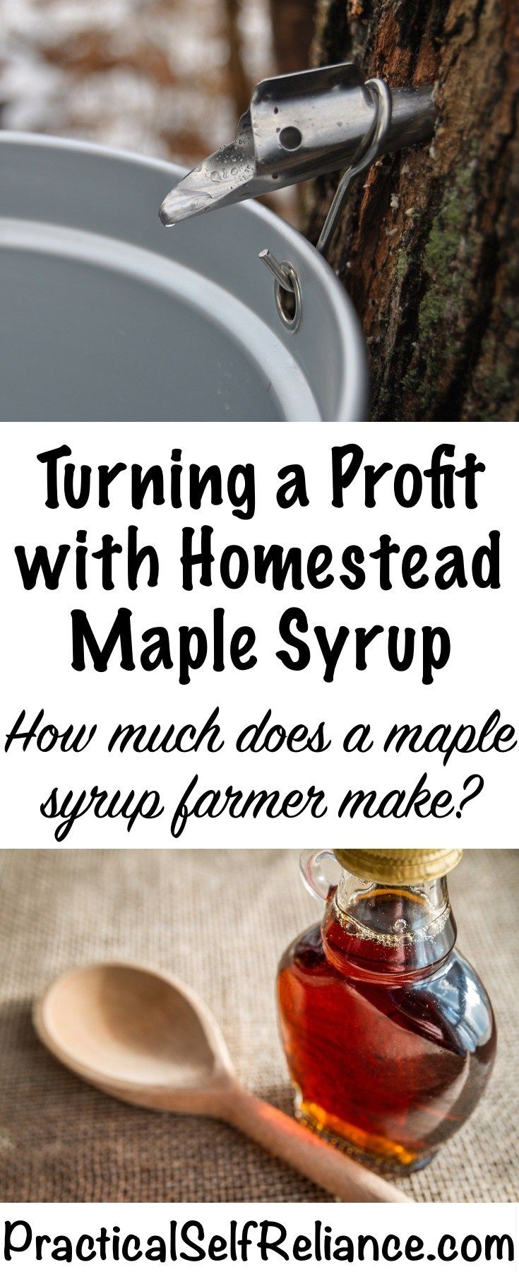 Can small scale maple sugaring be profitable