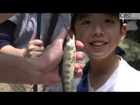 福岡県糸島市白糸の県指定名勝「白糸の滝」で6月14日、今年の安全を祈願する滝開きが行われ、滝周辺はヤマメ釣りやそうめん流しなどを楽しむ家族連れで賑わいました。 2014年06月24日