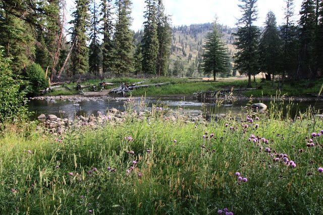 Slough Creek (moonshinejunkyardblog)