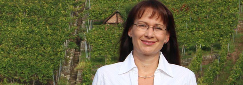 Paarberatung in Stuttgart | Paarberatung, Paartherapie