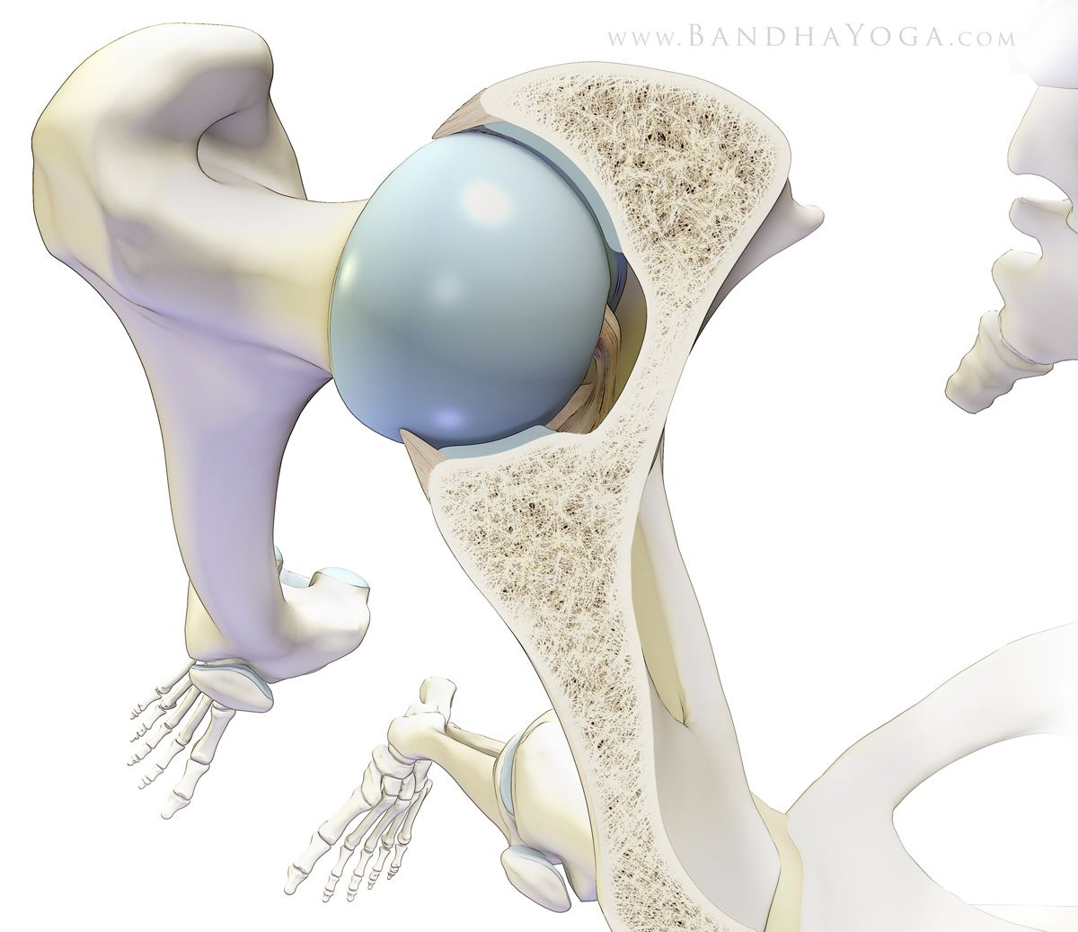 Preventing Yoga Injuries vs Preventing Yoga, Part I The