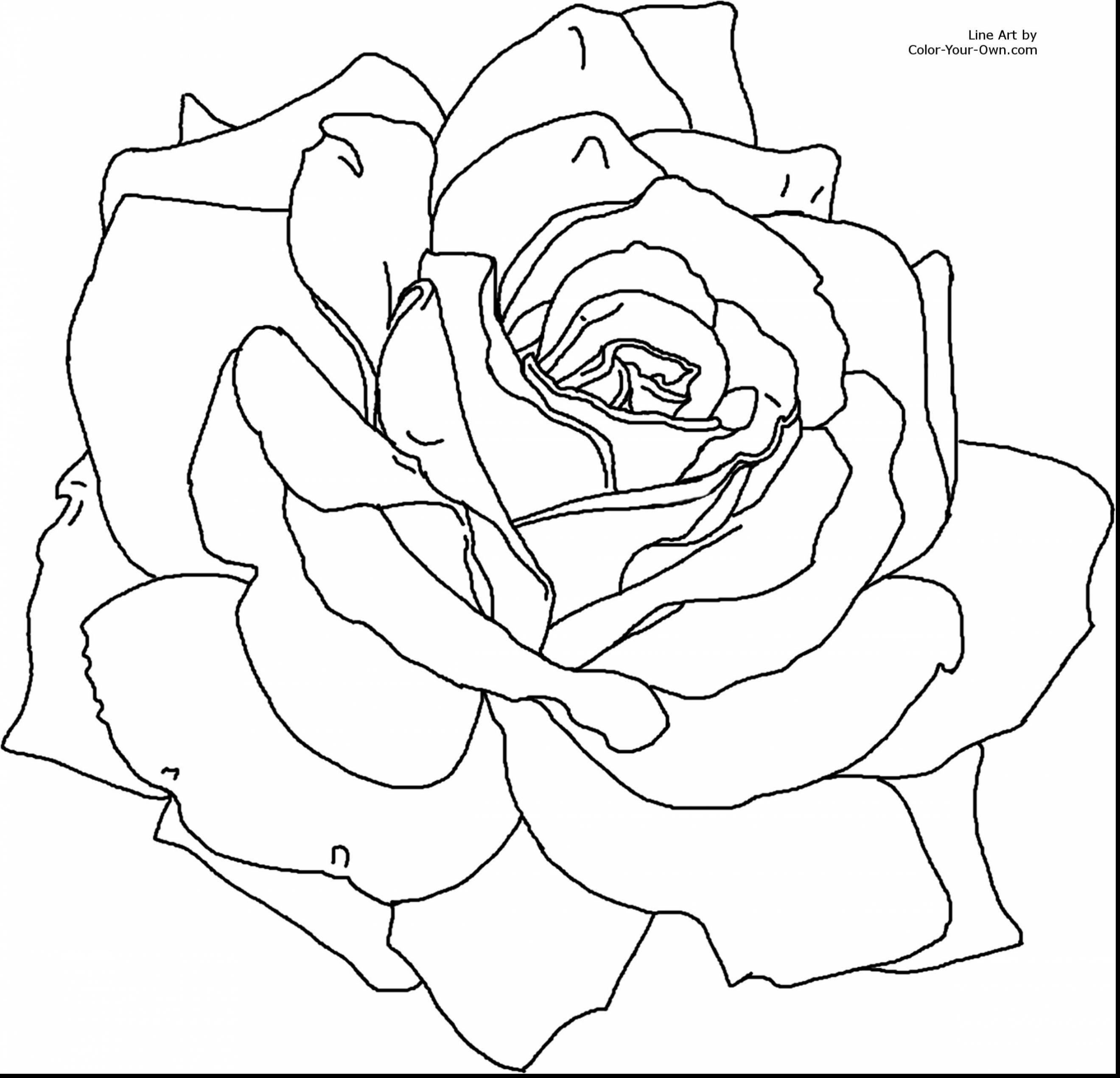Image associée d in pinterest coloring pages flower