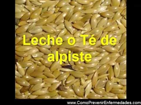 http://www.ComoPrevenirEnfermedades.com -El alpiste es una semilla de la madre naturaleza, que generalmente la consumen las aves, especialmente las que se en...