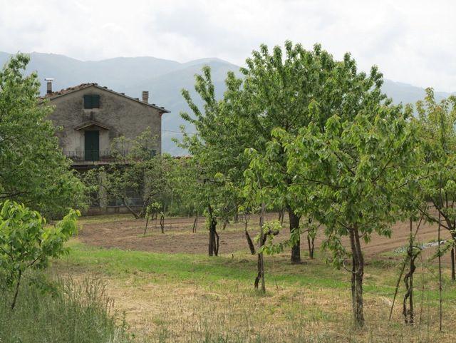Pieve di Monti di Villa | Bella Bagni di Lucca | To Do | Pinterest ...