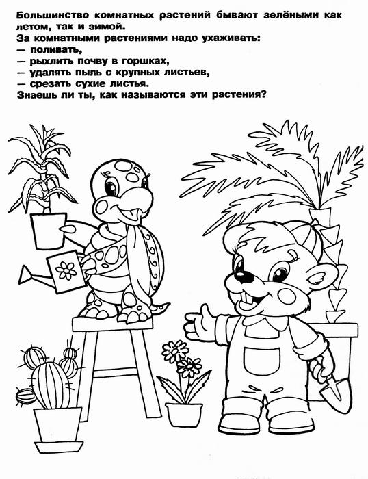 Raskraska Komnatnye Rasteniya Flowers Comics Art