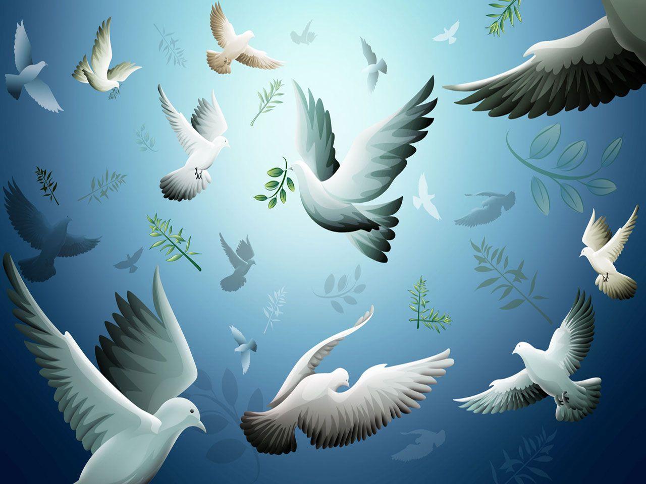 Top Free Moving Wallpapers For You Hintergrund Vogel Fliegende