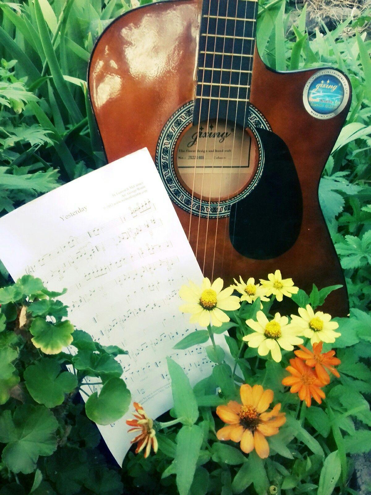ходе картинка гитара ноты осень цветы хотела, чтобы