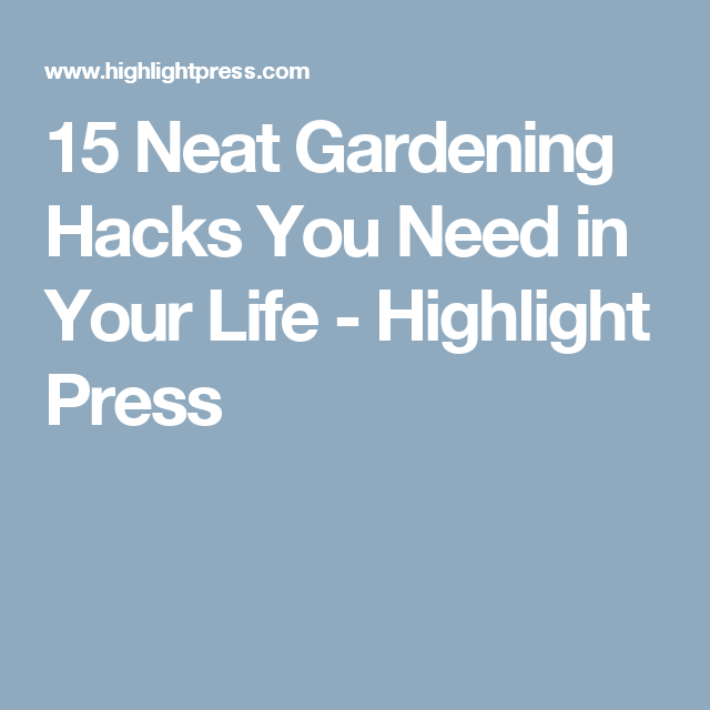 15 Neat Gardening Hacks You Need in Your Life - Highlight Press