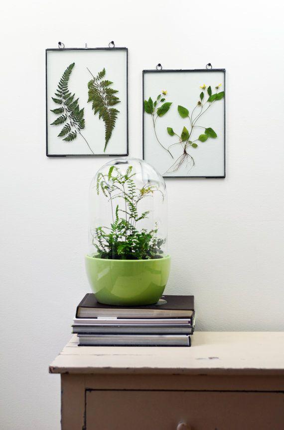 Loving Flowers In Glass Art Presentation Frames On Wall Wall