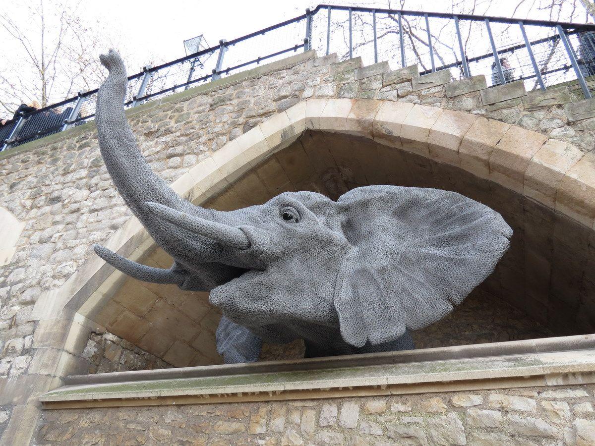 Elephant (chicken wire sculpture) | Sculpture | Pinterest ...