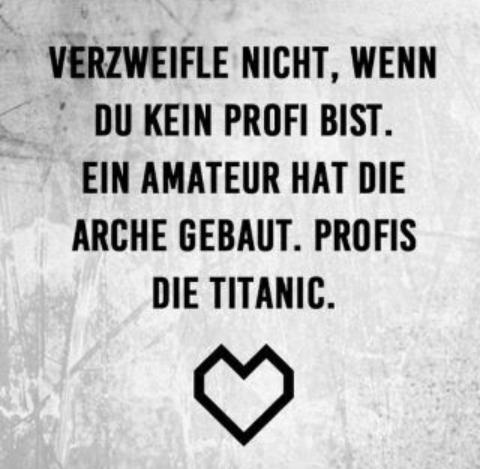 Verzweifele nicht, wenn du kein Profi bist. Ein Amateur hat die Arche gebaut. Profis die Titanic.