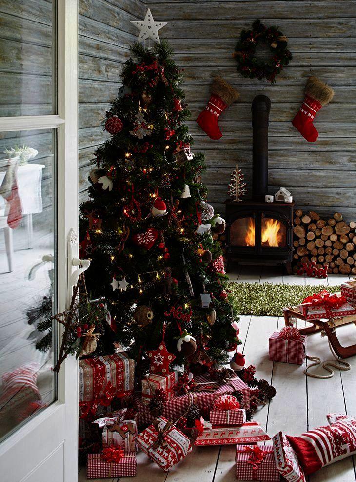 Christmas Cactus Toxic To Cats. Christmas Tree Shop Table