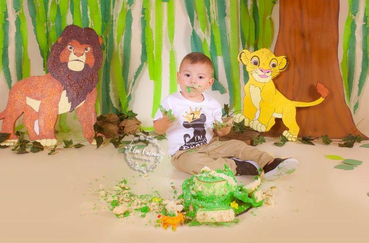 Boys Lion Guard Cake Smash Set Lion Guard Birthday Simba Boys 1st Birthday Outfit Lion Guard Cake Smash Outfit Smash the Cake