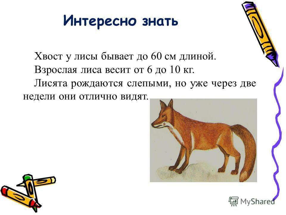Атарский 5 класс