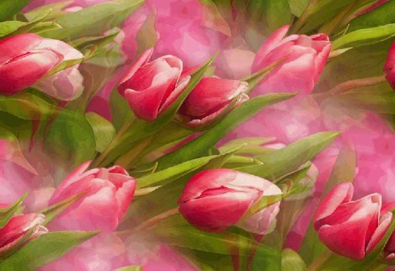 Самый красивый букет цветов картинка почувствовать