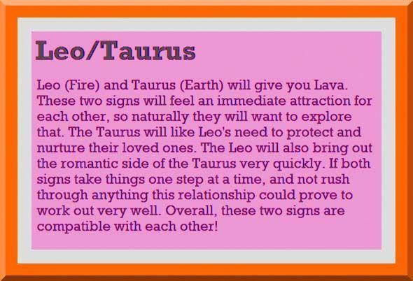 By Photo Congress || Leo And Taurus Love Horoscope