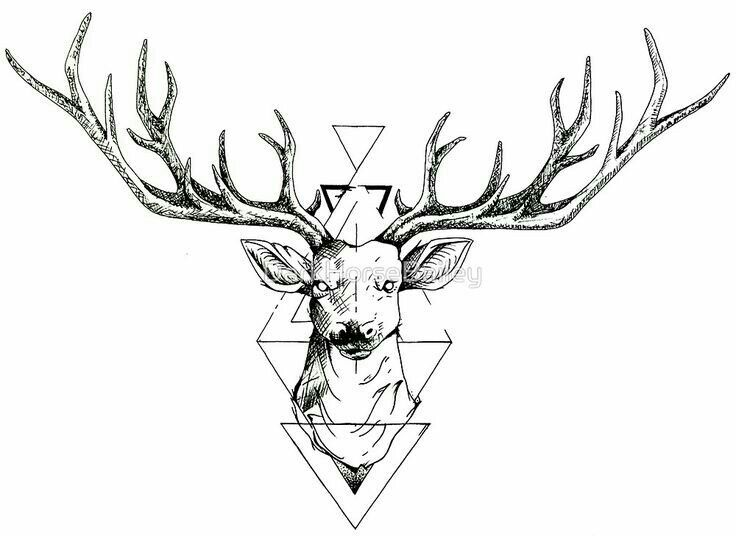 Discover Ideas About Deer Drawing