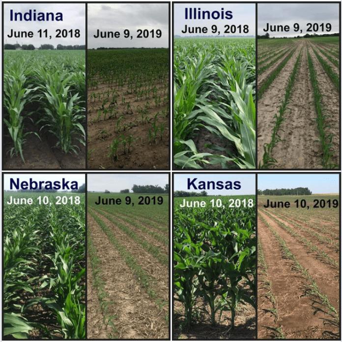 National Emergency as U.S Farm Crops Fail Are You