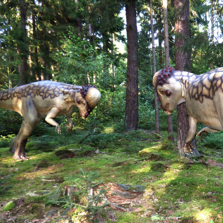Im DinosaurierFreiluftmuseum Altmühltal heißt es auf über