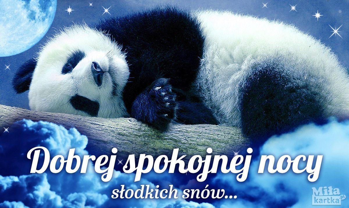 Pocztowka Z Panda Na Dobranoc Panda Mis Dobranoc Nadobranoc Kartki Wieczor Noc Pozdrowienia Ksiezyc Gwiazdy Slodkichsnow Pols Panda Bear Panda Bear