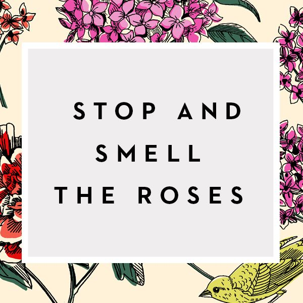 Image result for Happy People Stop and Smell The Roses