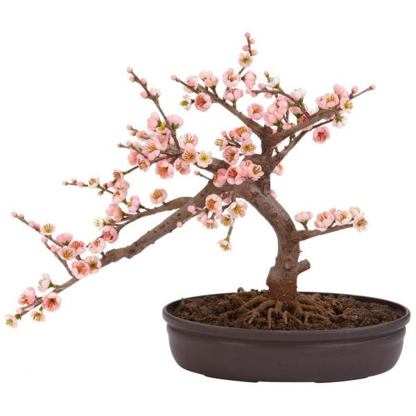 Nearly Natural 15 In H Pink Artificial Cherry Blossom Bonsai Silk Tree 4764 The Home Depot Cherry Blossom Bonsai Tree Indoor Bonsai Tree Bonsai Plants