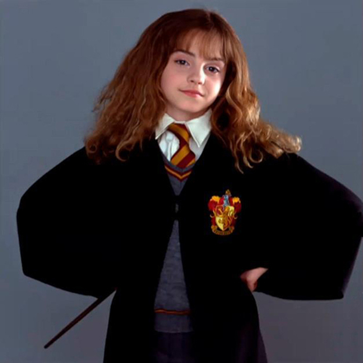 Image result for Emma Watson as Hermione Granger   Harry ...