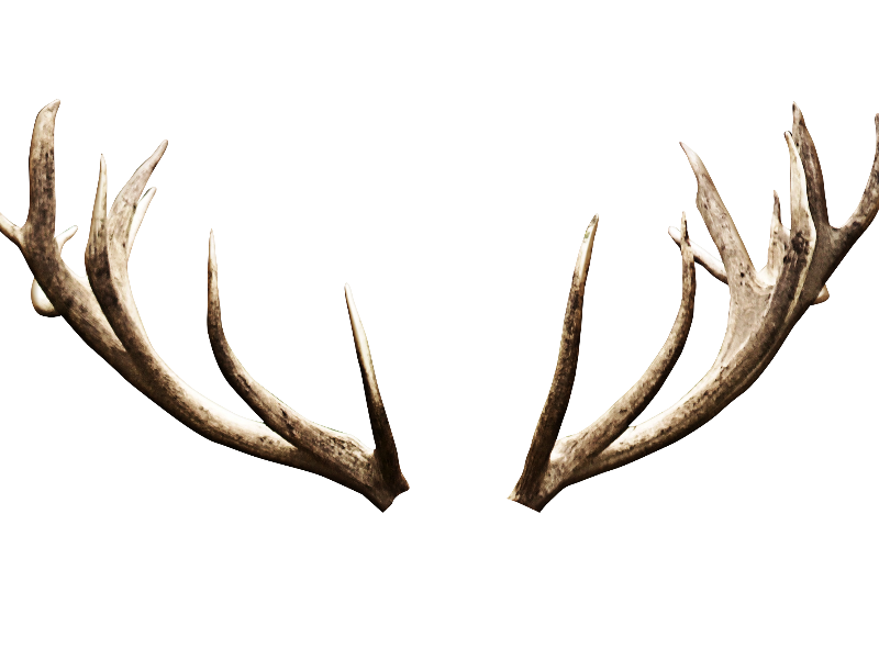 Deer Antlers Horns Png Image Isolated Objects Textures For Photoshop Antlers Black And White Cartoon Photoshop