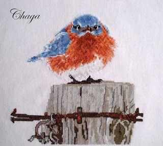 The Mad Bluebird