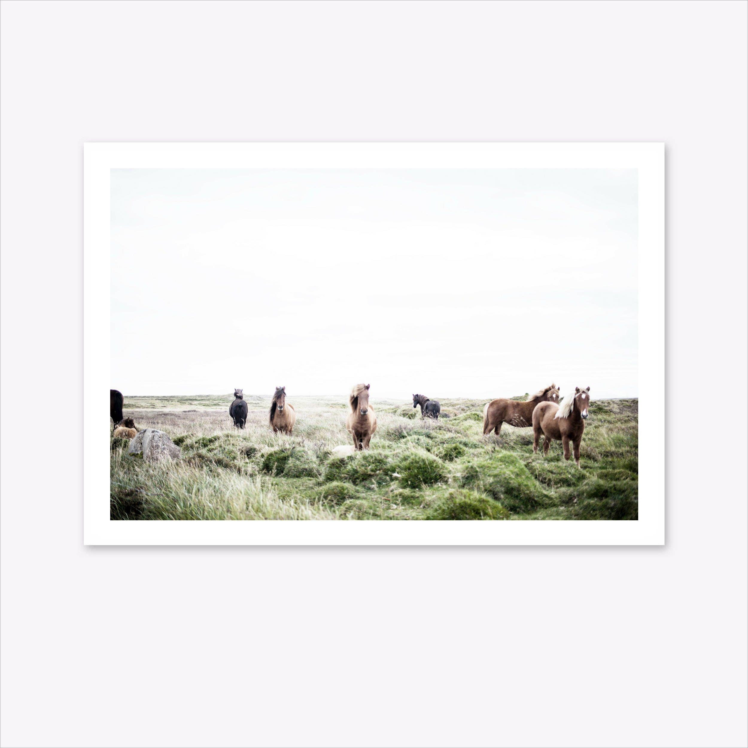Horse Print, Landscape Print, Scandinavian Print, Nature ...