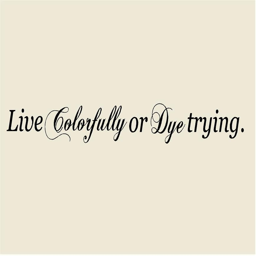 "Live Colorfully or Dye Trying 8""H x 48""W Salon Vinyl Wall Decal-Beauty Salon Wall Sticker Mural-Hairdresser Hair Stylist Salon Decor by VinylDesignCreations on Etsy"