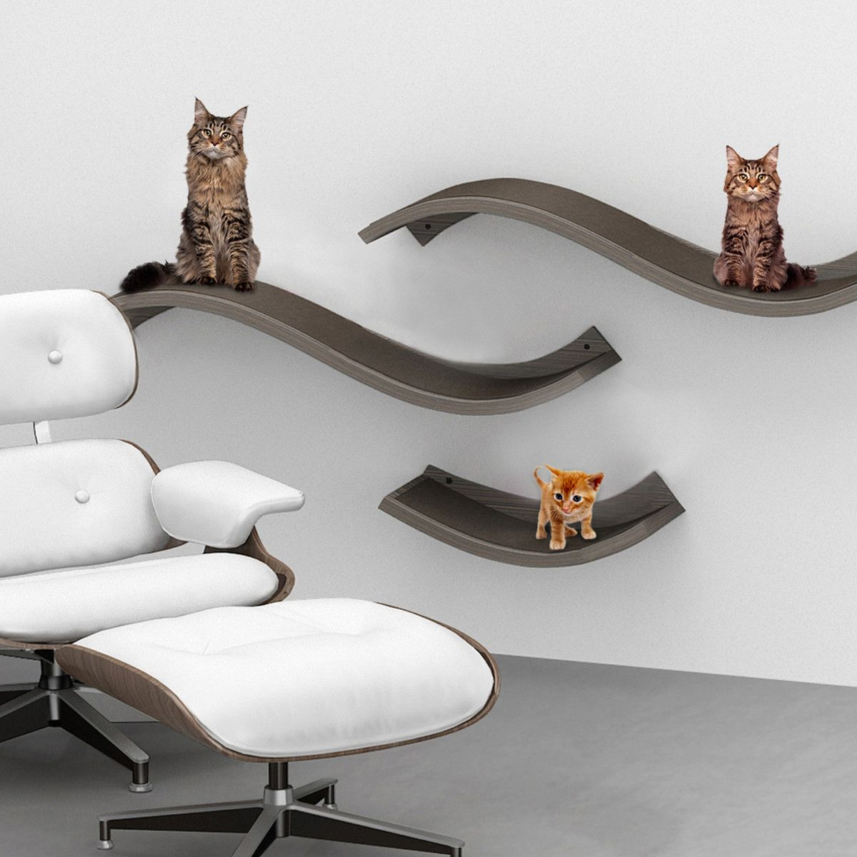 Cat Furniture Wall Fab Urban Cat Wave Perch Large Quotshelves For Cats