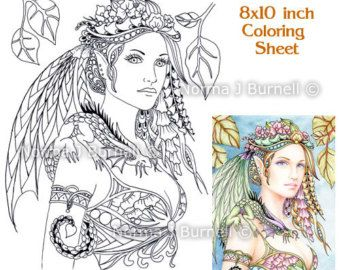 cardinals fairy tangles adult printable coloring book pages by norma burnell - Coloring Pages Dragons Fairies