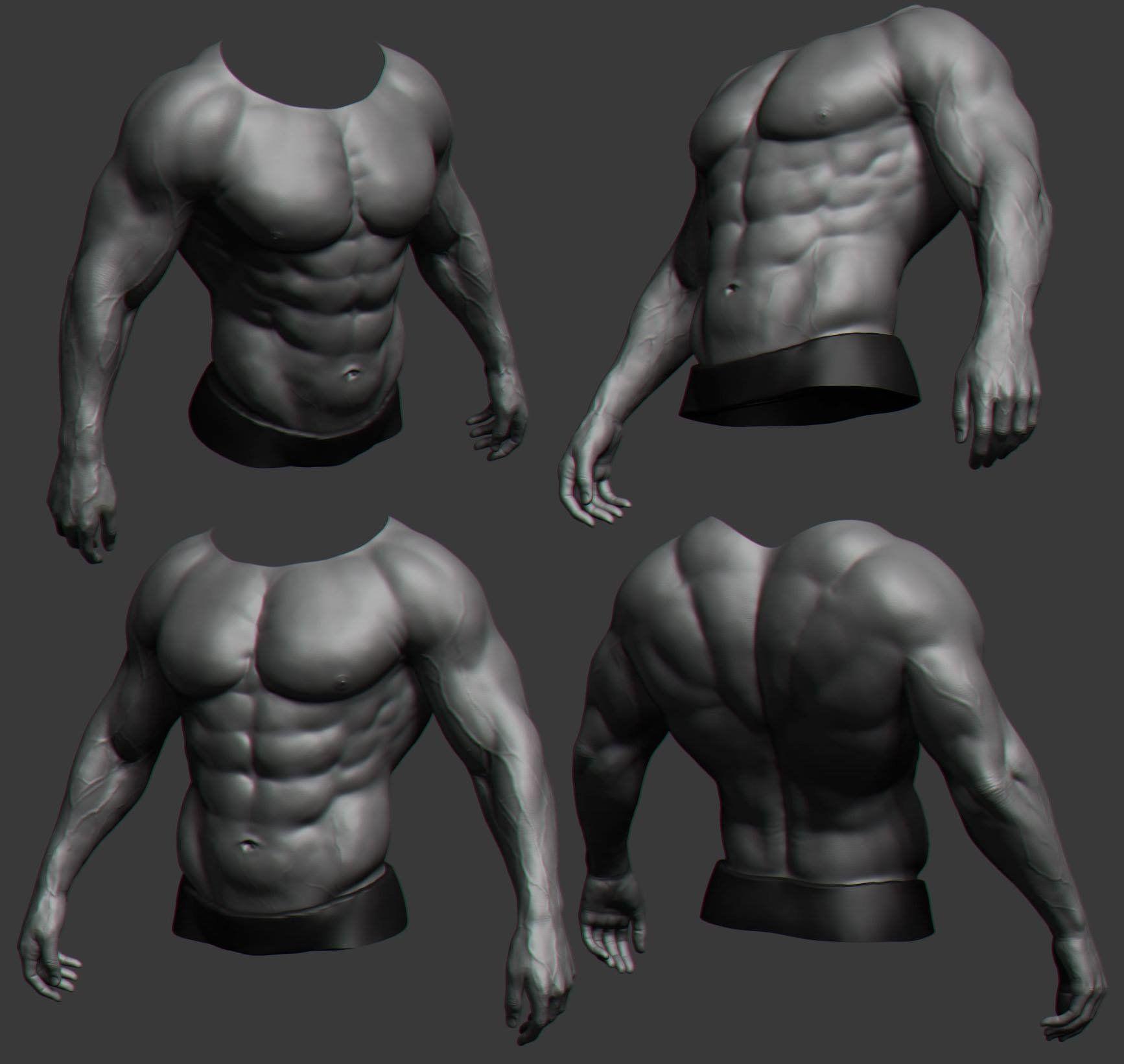 ArtStation - torso, brahim azizi | Anatomy References | Pinterest ...