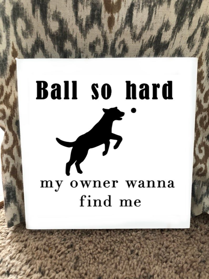 Funny Dog Signs Dog Signs For Home Funnydogsigns Dogsign
