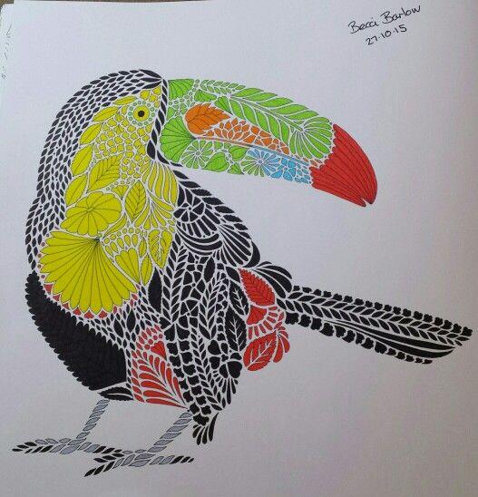 Millie Marotta Toucan ColouringColoring BooksAnimal KingdomBooks